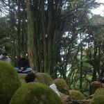 """Dom 19 Junho - Yoga Forum na Natureza: """"Neo-humanismo - Família Universal e o Yoga"""". Parque Monsanto."""