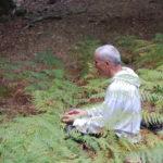 """Início 8 Out, um Sábado por mês: Curso """"Mergulho na Meditação"""""""