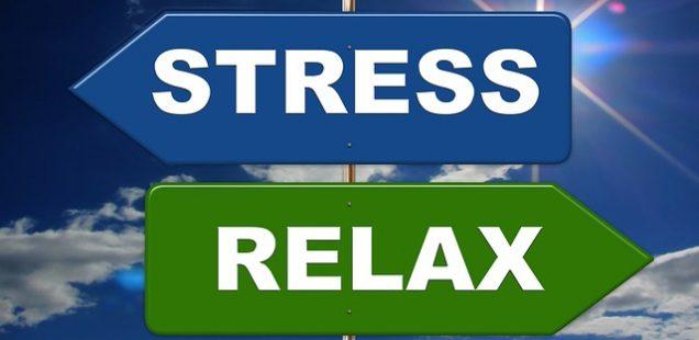 Workshop Gestão de Stress - 17 Nov